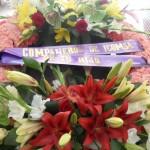 corona6