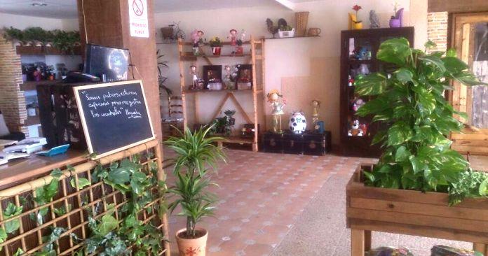 sananton_interior2